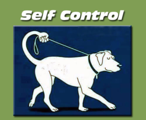 autocontrollo